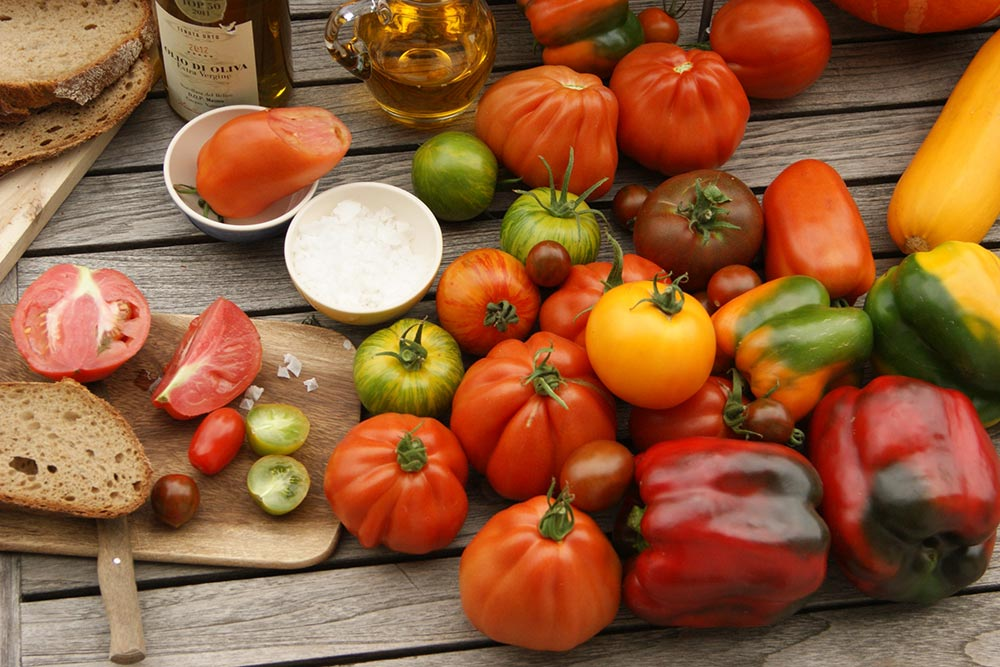 Ernteerfolg mit Gemüsepflanzen